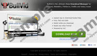 BullVid Download Manager