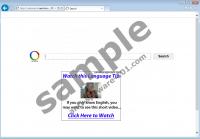 websearch.searchrocket.info