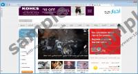 521news.com