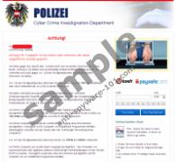 Polizei Cybercrime Investigation Department