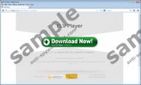 FLV Player Virus