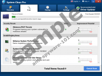 System Clean Pro