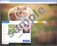 CatHomepage Toolbar