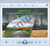 Ecovector Ransomware