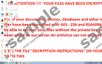 R980 Ransomware