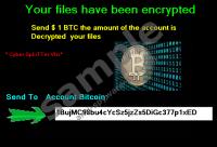 Cyber Splitter Vbs Ransomware